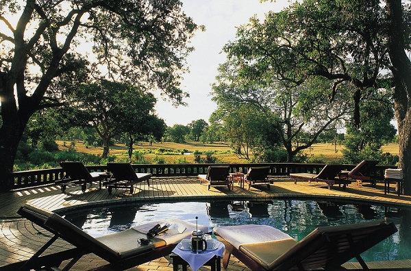 bloved-uk-wedding-blog-african-honeymoons-safari-sabi-bush-lodge-sabi-sands-south-africa