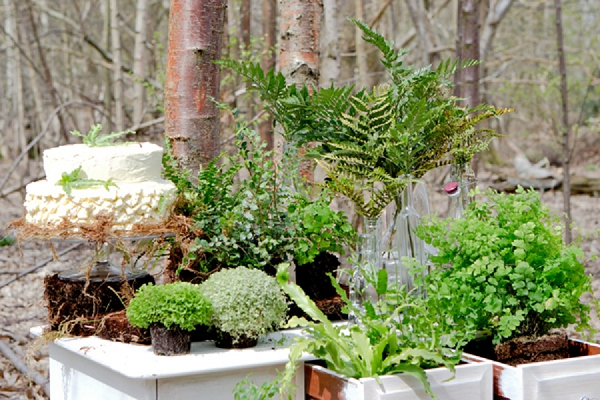bloved-uk-wedding-blog-forest-fern-inspiration- (5)