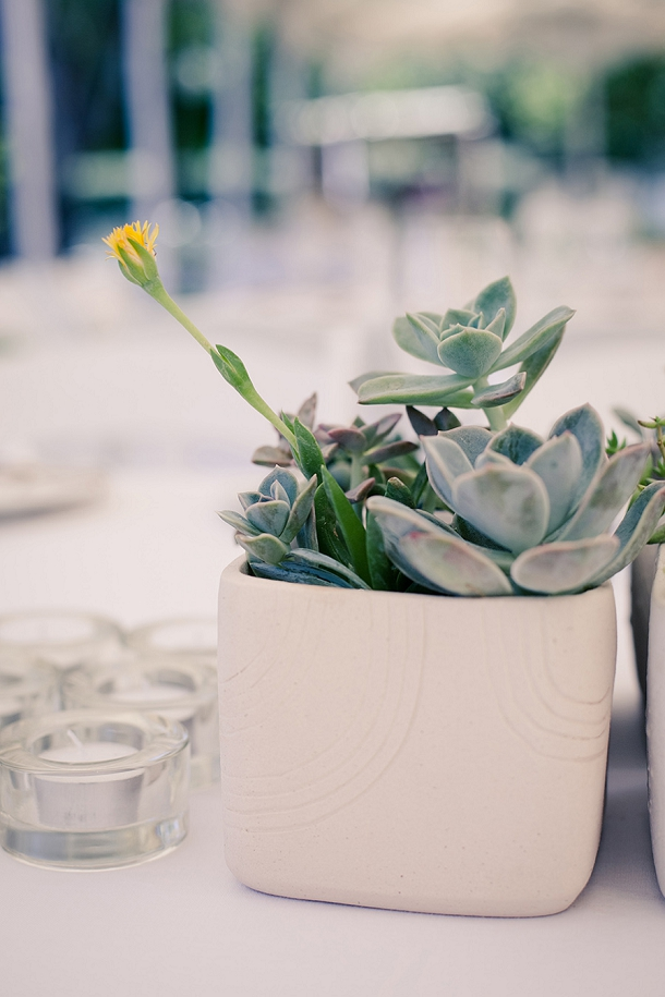 bloved-uk-wedding-blog-south-african-farm-wedding-succulents-and-lace (4)
