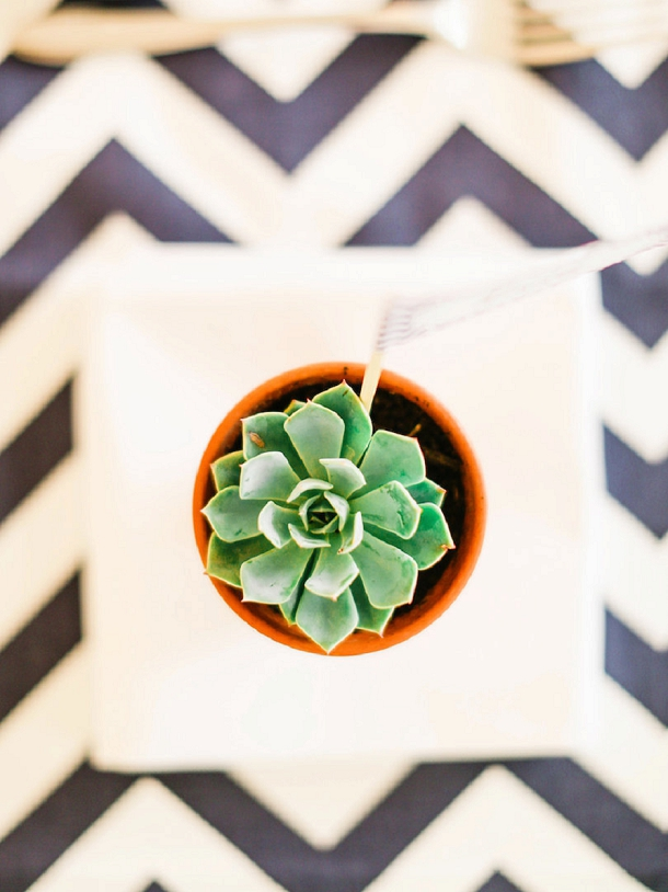 bloved-uk-wedding-blog-chevron-succulents-wedding-belle-and-beau-photography (95)
