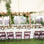 Organic vegetable party decor