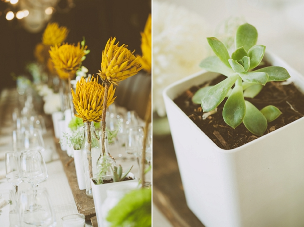 Kallie & Ansu's Modern Organic South African Wedding with Yellow Painted Proteas by Blackframe Photography (6)