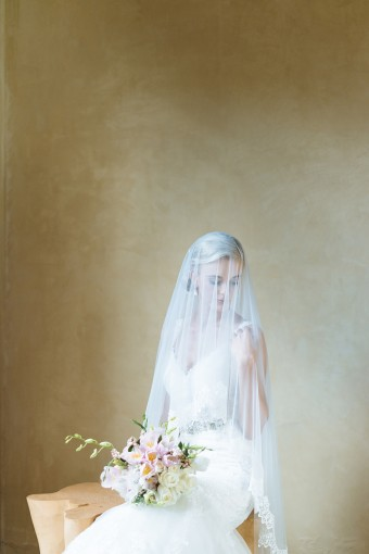 veiled bridal portrait