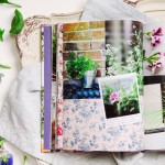 Herb Flower Book Catharine Noble Photography