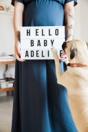 hello baby lightbox sign maternity session with pet dogs