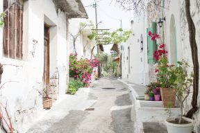 exploring the winding bright streets of the aegean islands