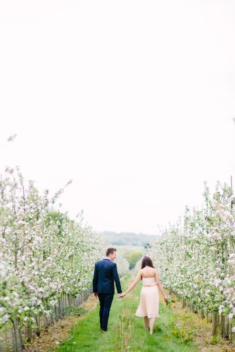 couple holding hands in an orchard of blossoms