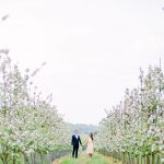 couples engagement session set within a pretty orchard