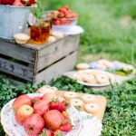 beautiful red picnic apples