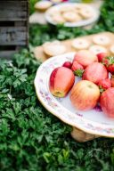 lucious red apples and picnic styling