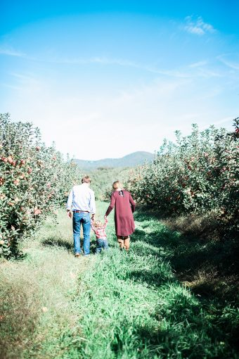 family hold hands whilst walking through the orchard of apple trees