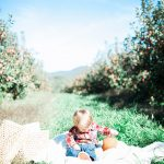 Little boy sits on a blanket in the middle of the apple orchard