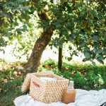 sweet Autumn photo session set up under a tree with blanket and basket