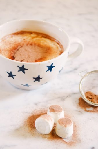 hot chocolate ingrediants of spilled cocoa and marshmallows dusted with coco powder