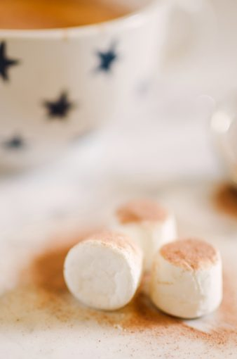 marshmallows dusted with coco powder
