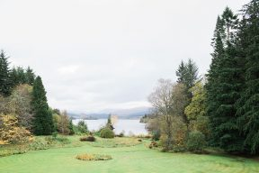 the green gardens and mature trees with water in the distance