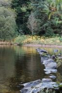 row of stones and the still water of the Loch