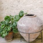 sandstone wall and rustic pottery urn and plants