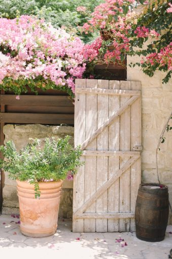 rustic doorway and beautiful pink flowers