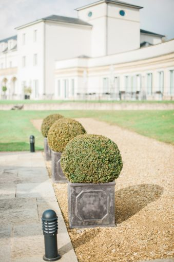topiary trees lining path along the hotel