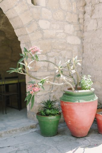 archway of sandstone with collection of plants