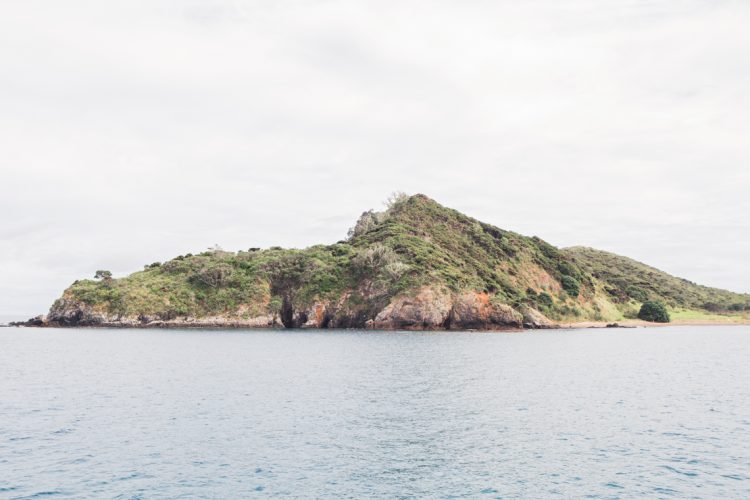 island approach from the sea water of New Zealand