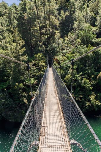 New Zealand rope bridge walkway