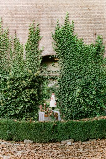 wall filled with ivy as a backdrop for a dessert table display