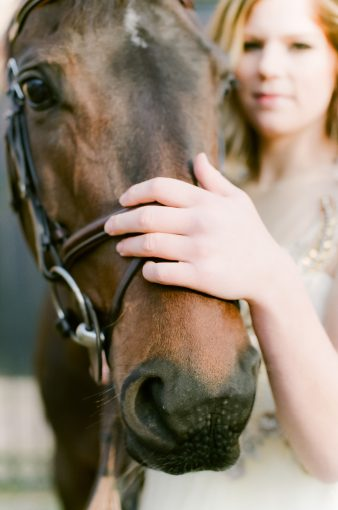 brides hand resting on her horses nose