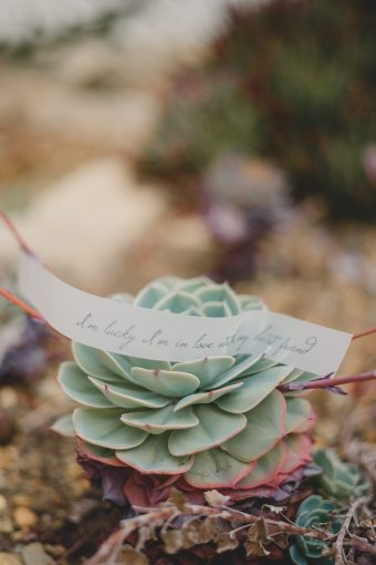 succulent with wedding stationery