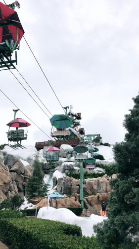 fun rides at disney blizzard beach