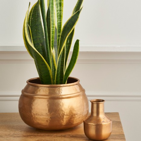 gold hammered plant pots with house plants